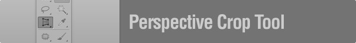 Perspective Crop Tool.jpg